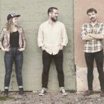 Maine Coon Trio